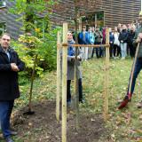 SchulBrücke Baumpflanzung Foto_03